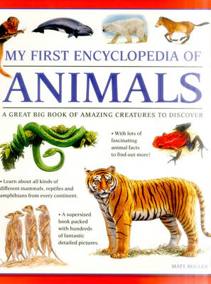 My First Encyclopedia of Animals (Giant Size) (Paperback)