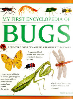 My First Encylopedia of Bugs (Giant Size) (Paperback)