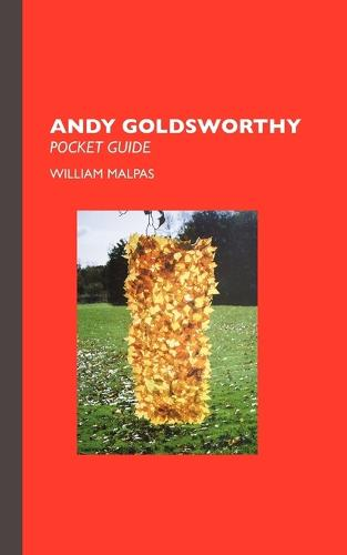 Andy Goldsworthy - Sculptors (Paperback)