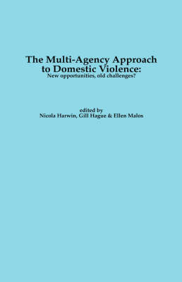 Domestic Violence and Multi-agency Working (Paperback)