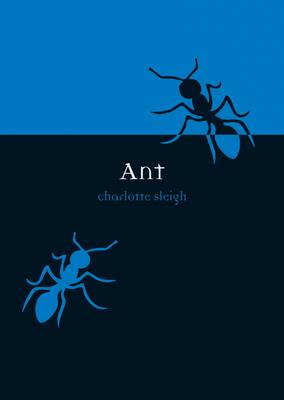 Ant - Animal Series (Paperback)