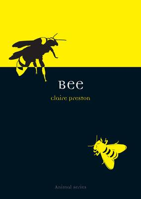 Bee - Animal Series (Paperback)