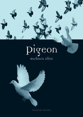 Pigeon - Animal Series (Paperback)