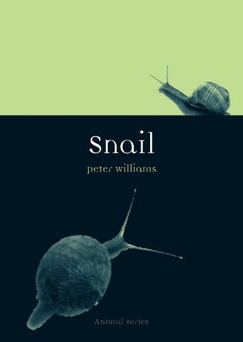 Snail - Anima Series (Paperback)
