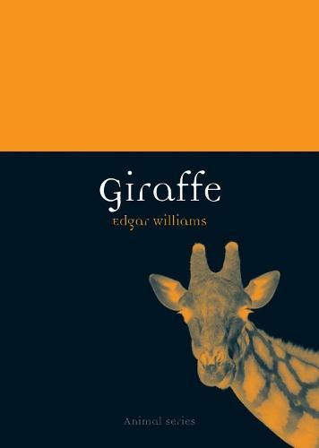 Giraffe - Animal Series (Paperback)