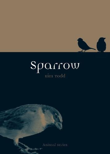 Sparrow - Animal Series (Paperback)