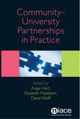 Community-University Partnerships in Practice (Paperback)