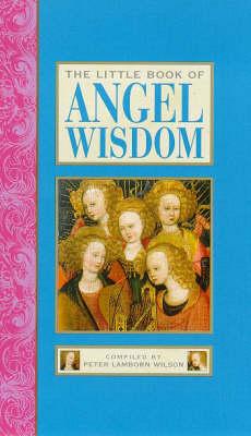 The Little Book of Angel Wisdom - Little Books (Hardback)