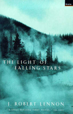 Light of Falling Stars (Paperback)