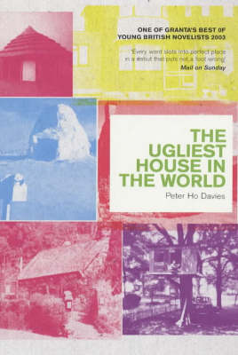 The Ugliest House in the World (Paperback)