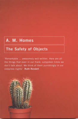 The Safety of Objects (Paperback)