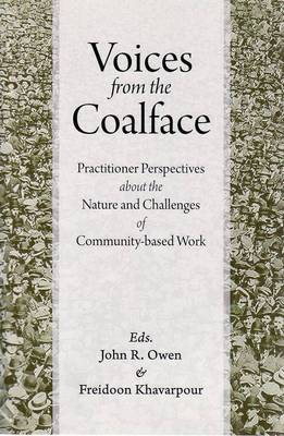 Voices from the Coalface: Practitioner Perspectives on the Challenges of Community-Based Work (Paperback)