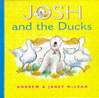 Josh and the Ducks - Josh series (Hardback)