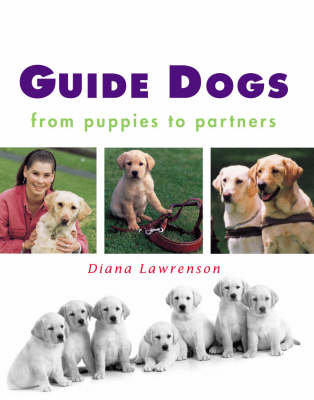 Guide Dogs: From Puppies to Partners (Hardback)