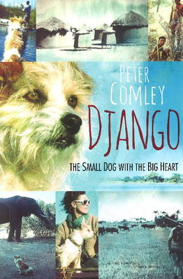 Django: A small dog with a big heart (Paperback)
