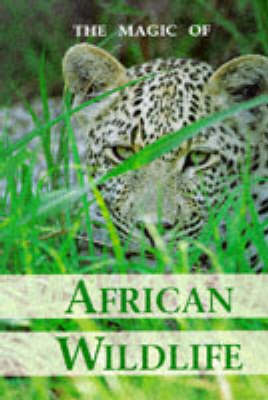 Magic of African Wild Life (Paperback)