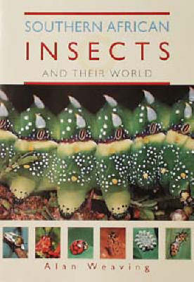 Southern African Insects and Their World (Paperback)