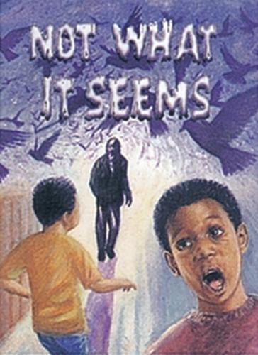 Not What it Seems - Wildcats (Paperback)