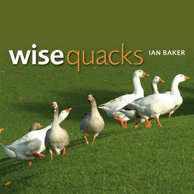 Wise Quacks (Paperback)