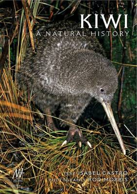 Kiwi: A Natural History - Family Guide to New Zealand Wildlife 2 (Paperback)