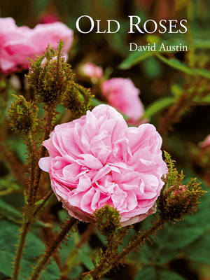 Old Roses (Hardback)