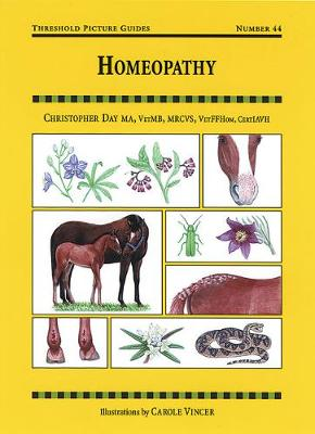 Homeopathy - Threshold Picture Guide (Paperback)