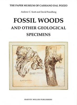 Fossil Woods and Other Geological Specimens - Paper Museum of Cassiano dal Pozzo Series B, Part  (Hardback)
