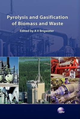 Pyrolysis and Gasification of Biomass and Waste (Hardback)