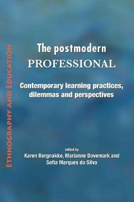 The Postmodern Professional: Contemporary Learning Practices, Dilemmas and Perspectives (Paperback)