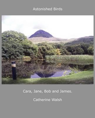 Astonished Birds Cara, Jane, Bob and James. (Paperback)