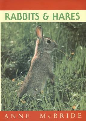 Rabbits and Hares (Paperback)