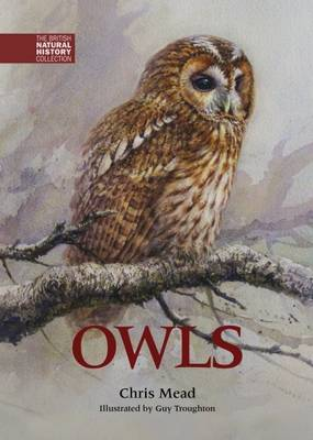 Owls - The British Natural History Collection 1 (Hardback)