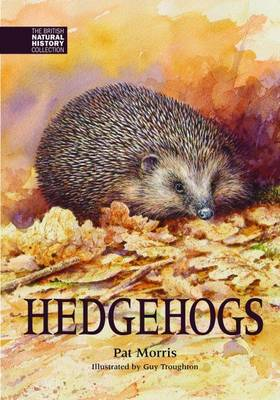 Hedgehogs - The British Natural History Collection 4 (Hardback)