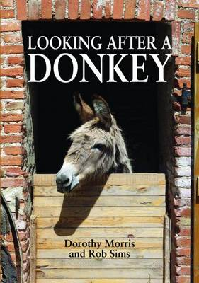 Looking After a Donkey (Paperback)