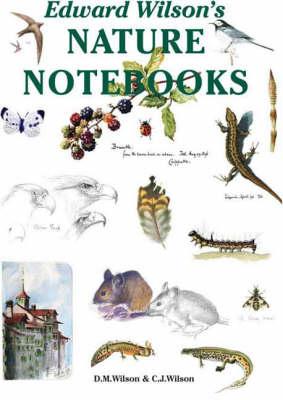 Edward Wilson's Nature Notebooks - Antarctic (Hardback)