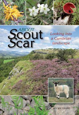 About Scout Scar: Looking into a Cumbrian Landscape (Paperback)