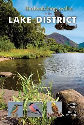 Birdwatching Walks in the Lake District (Paperback)