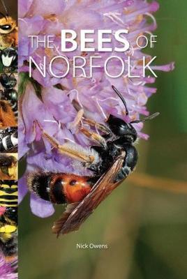 The Bees of Norfolk (Hardback)