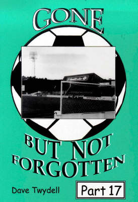 Gone but Not Forgotten: 17 (Paperback)