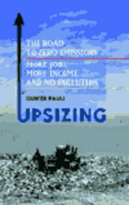 Upsizing: The Road to Zero Emissions - More Jobs, More Income and No Pollution (Hardback)
