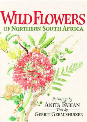 Wild Flowers of Northern South Africa (Paperback)