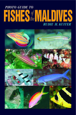 Photo Guide to Fishes of the Maldives (Paperback)
