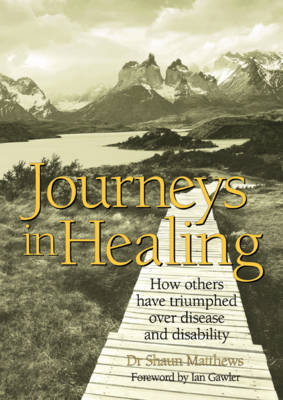 Journeys in Healing: How Others Have Triumphed over Disease and Disability (Paperback)