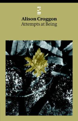 Attempts at Being - Salt Modern Poets (Paperback)