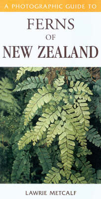 A Photographic Guide to Ferns of New Zealand (Paperback)
