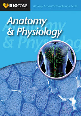 Anatomy and Physiology Modular Workbook (Paperback)