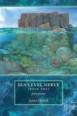 Sea-Level Nerve: Book One (Paperback)
