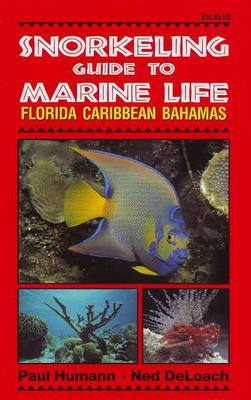 Snorkeling Guide to Marine Life: Florida, Caribbean, Bahamas (Paperback)
