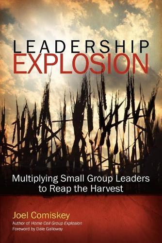 Leadership Explosion: Multiplying Cell Group Leaders to Reap the Harvest (Paperback)