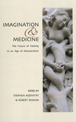 Imagination and Medicine: The Future of Healing in an Age of Neuroscience (Paperback)